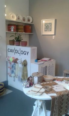 Cavology at Cobden Chambers