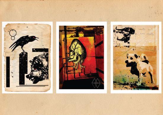 illustrations trio